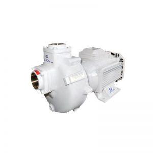 Gineico-Marine-Gianneschi-Pump-GIAN BMA-G